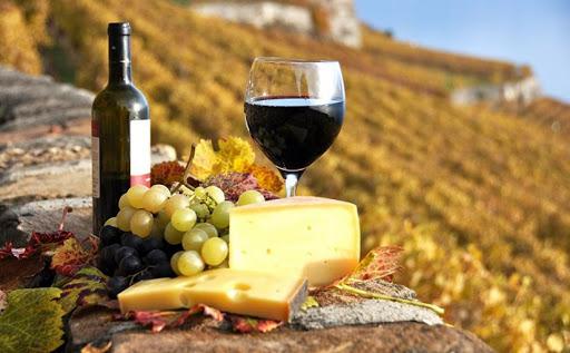 Vini di Calabria<br> SCAVIGNA DOP