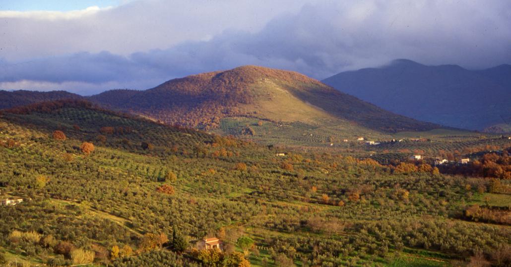 Gli Uliveti a terrazze e lunette dei Monti Lucretili (Sabina)