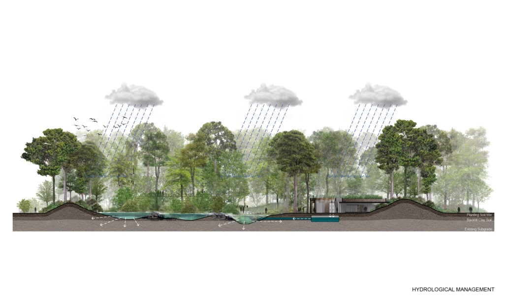 IL PROGETTO METRO-FOREST